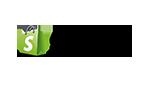 Shopify nieuwsbrief integratie
